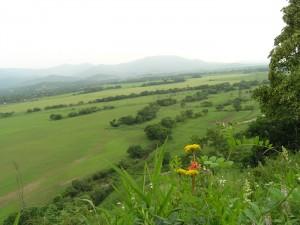 Золотая долина, Партизанский район